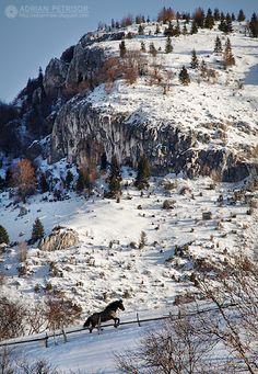Magura mountain village, Brasov county , Romania www.romaniasfriends.com