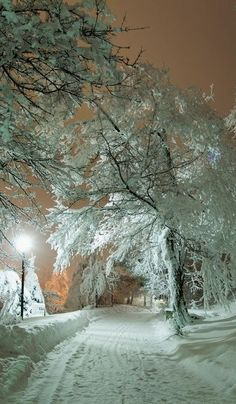 Snowy Night, Russia