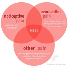 "Venn diagram showing the intersection of neuropathic pain, nociceptive pain, and ""other"" pain. In the centre is the word ""hell. Chronic Pain, Fibromyalgia, Cupping Massage, Massage Marketing, Neuropathic Pain, Neck Pain Relief, Human Anatomy And Physiology, Health"