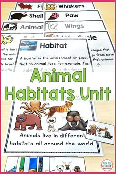 This literacy and language based science unit helps students with disabilities access science curriculum by breaking down the language and concepts. The unit is full of differentiated and leveled activities and visuals to support learning. This unit is perfect for special education classrooms, science centers, alternative assessment students, students with autism, life skills programs and self-contained classrooms.