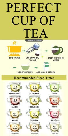 EVERYTHING YOU EVER NEEDED TO KNOW FOR MAKING THE PERFECT CUP OF TEA