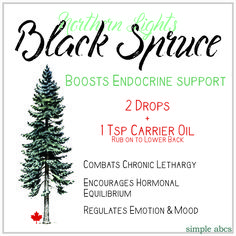 Young Living Essential Oil: Northern Lights Black Spruce Benefits: Improve skin health, Natural, Meditation, Grounding Aroma, Relaxing, lethargy combat, hormonal balance, regulates mood - Included in Premium Starter Kit