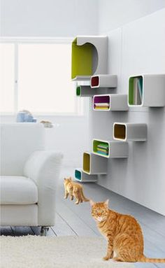 Modern Cat Furniture – The Lollipop from Pet Dream House Modern Cat Furniture, Pet Furniture, Cat Climbing Tree, Gates, Cat Perch, Cat Shelves, Cat Playground, Cat Room, Dream Home Design
