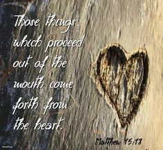 Those things which proceed out of the mouth come forth from the heart.  Matthew 15:18
