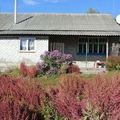Дача в деревне by oksanasemenova