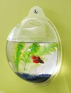 Wall Mount Hanging Beta Fish Bubble Aquarium Bowl Tank