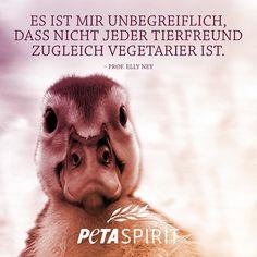 PETA-Spirit - Alle Zitate mit Bilder von PETA-Spirit auf einem Blick
