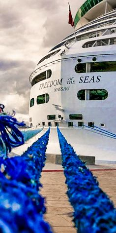 Freedom of the Seas   Whether you're taking photos with Shrek in the Dreamworks Experience, catching a Broadway show on the ocean, or relaxing in the Solarium, Freedom of the Seas can take you to a new happy place. (Photo: airolflyy on Instagram)