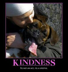 One random act of kindness a day, that's all it takes!