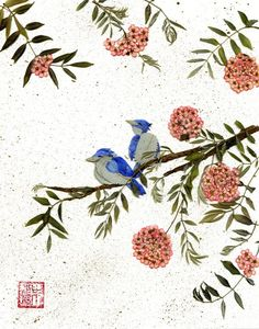 make pressed flower cards with sketches and watercolors of birds or other backgrounds Art Floral, Pressed Leaves, Envelope Art, Pressed Flower Art, Art Walk, Floral Supplies, How To Preserve Flowers, Flower Fairies, Leaf Art