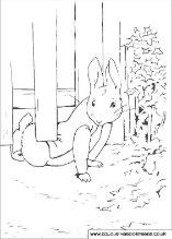 30 printable Peter Rabbit coloring pages