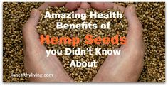 Hemp is not only a superfood for your body but it also has great number of potential industrial uses. Amazing Health Benefits of Hemp Seeds you Didn't Know About