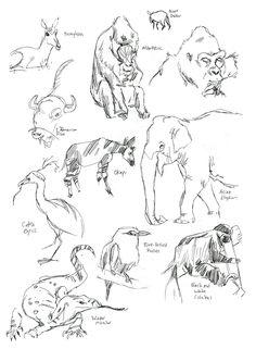 drawing drawings zoo simple pencil animal sketchbook gesture animals sketching inspiration