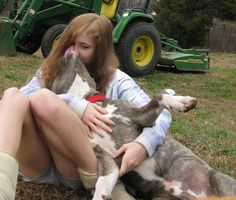 Proper Human to Dog Communication  Lots of good information if the links below this one.