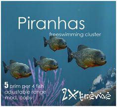 piranhas by :: 2Xtreme ::