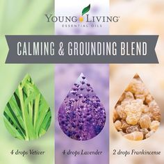 Calming and Grounding Blend for your diffuser using vetiver, lavender, and frankincense Young Living Essential Oils