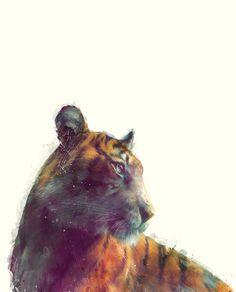Tiger // Solace Art Print by Amy Hamilton   Society6