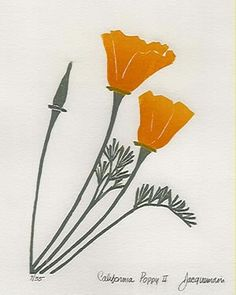 Poppy woodcut - two colors, clean lines