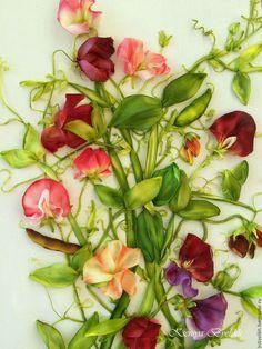 Купить Душистый горошек - разноцветный, душистый горошек, летние цветы, лето, зелень, картина в подарок