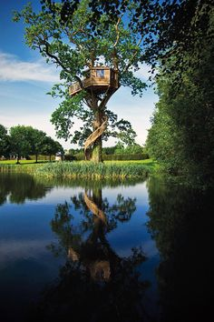 A Tree House With a Spiral Staircase – http://treehouselove.com/post/67064843431/a-tree-house-with-a-spiral-staircase