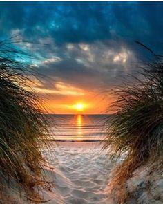 Ocean Sunset, Ocean Beach, Beach Sunsets, Destin Beach, Beach Relax, Beach Grass, Beach Scenery, Sunset Pics, Summer Sunset