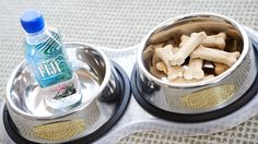 Treat your favorite furry friend like royalty with our pet amenities at The Liberty Hotel.