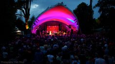 Go to WOMAD Charlton Park, UK - World music festival in 2014 - DONE!