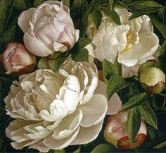 title for Peony Gardenia. Mia Tarney