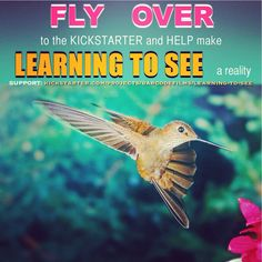 """Learning To See"" http://www.kickstarter.com/projects/barcodefilms/learning-to-see  Travel with macro photographer Robert Oelman deep into the rain forests of South America to discover the world's most exotic insects.      Pre-order the film today for as little 20 dollars."