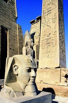 Ramsses II #Luxor temple..... Luxor Ancient Ruins, Ancient Egypt, Sphinx, Art Antique, Luxor Temple, Kairo, Visit Egypt, Religion, Giza