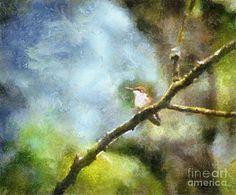 Hummingbird Photograph - Hummingbird by Kerri Farley