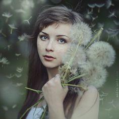 Dandelion by ~AnitaAnti on deviantART