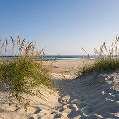 Ocracoke Beach   Ocracoke Island, North Carolina  Swimming, shelling, kite-flying, and wild-horse watching count among the beach activities.    CoastalLiving.com