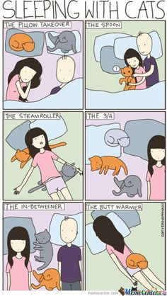 Sleeping with cats!