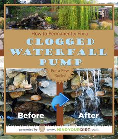 Owning a backyard water feature can be a very time consuming landscaping project. Keeping the water clean and clear without chemicals and keeping the pump from clogging up to keep the water flow or water falls from turning into a slow trickle can be so challenging. Here's the perfect solution that will last at least six months before tweaking or maintenance and only cost you a few bucks! This method works like a dream!! You must try this. How to fix a clogged waterfall pump.