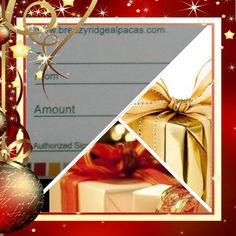 Gift Certificate Customize your Gift Breezy by BreezyRidgeAlpacas