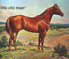 The Ole Man