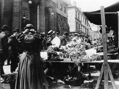 Birmingham wholesale market 1901