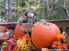 Fall Scenes with Pumpkins | Autumn Decoration : Scarecrow & Pumpkins Wallpaper 27 - Wallcoo.net