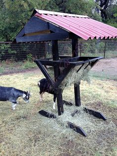 Goat Hay Feeder. Only would add something to catch the hay so it wouldn't be on the ground !