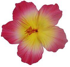 Hawaiian Flower Hair Clips - Large Hibiscus