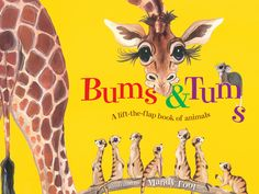 Bums & Tums: a lift-the-flap book of animals - Reading Time