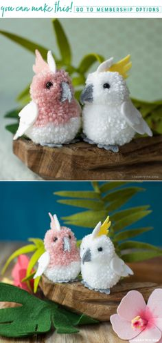 Spread Your Crafting Wings! 🌴✨ Learn how to craft these cute and cuddly creatures of the air! Using both felt and pom-poms, we've made this incredibly easy cockatoo pet project. You can craft your own cute cockatoos here https://liagriffith.com/pom-pom-felt-cockatoo/⠀⠀⠀⠀⠀⠀⠀⠀⠀ *⠀⠀⠀⠀⠀⠀⠀⠀⠀ *⠀⠀⠀⠀⠀⠀⠀⠀⠀ *⠀⠀⠀⠀⠀⠀⠀⠀⠀ #cockatoo #tropical #tropics #bird #birds #pompom #felt #feltcute #feltcraft #feltcrafts #diy #diycraft #diycrafts #diyproject #diyprojects #diyidea #diyideas #diykids #kidscrafts…