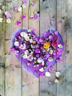 Ana Rosa Such a sweet heart Birthday Wishes For Fiance, My Funny Valentine, Valentines, Jar Of Hearts, Sweet Hearts, I Love Heart, Heart Pics, All Things Purple, Heart Art