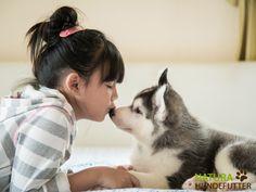"""Ein #Welpe zieht ein! Es sollte sich vor der Anschaffung eines Hundes, ganz egal ob Welpe oder Erwachsener Hund, immer zuerst die Frage gestellt werden: """"Warum ein Hund"""". In keinem Fall ist es empfehlenswert den Hund als Kinder - oder Partnerersatz zu sich zu holen. In erster Linie sollte es sich nur darum drehen den #Hund des Hundes willen zu wollen."""