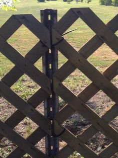 Using metal fencing posts and zip-ties to create a lattice fence. Or rebar?