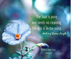 The Soul is pure and needs no cleaning ~ The dirt is in the Mind ༺❁༻ Maharaj…