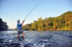 Enjoy fishing near the banks of #FlintRiver in #Albany, GA http://visitalbanyga.com/