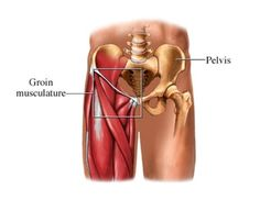 Groin Pull...  http://www.performchiro.com/your-symptoms/#tab-1-3-groin-pull