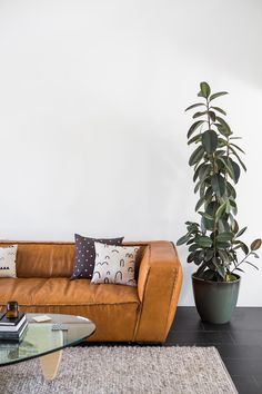 Tips That Help You Get The Best Leather Sofa Deal. Leather sofas and leather couch sets are available in a diversity of colors and styles. A leather couch is the ideal way to improve a space's design and th Interior Desing, Home Interior, Natural Interior, Home Living Room, Living Spaces, House Ideas, Ideas Hogar, Deco Design, Home Decor Inspiration